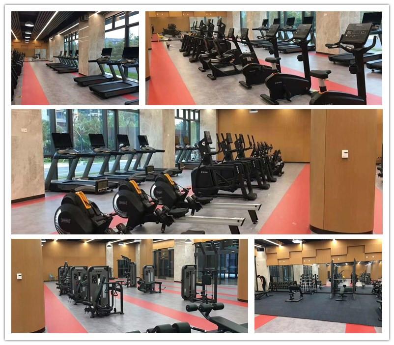 室内健身器材-单位健身房器材